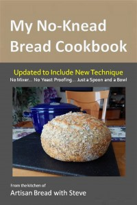 1a.MyNoKneadBreadCookbook(6x9Cover)