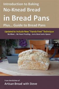 2c.IntroToBakingNoKneadBreadInBreadPans(6x9Cover)
