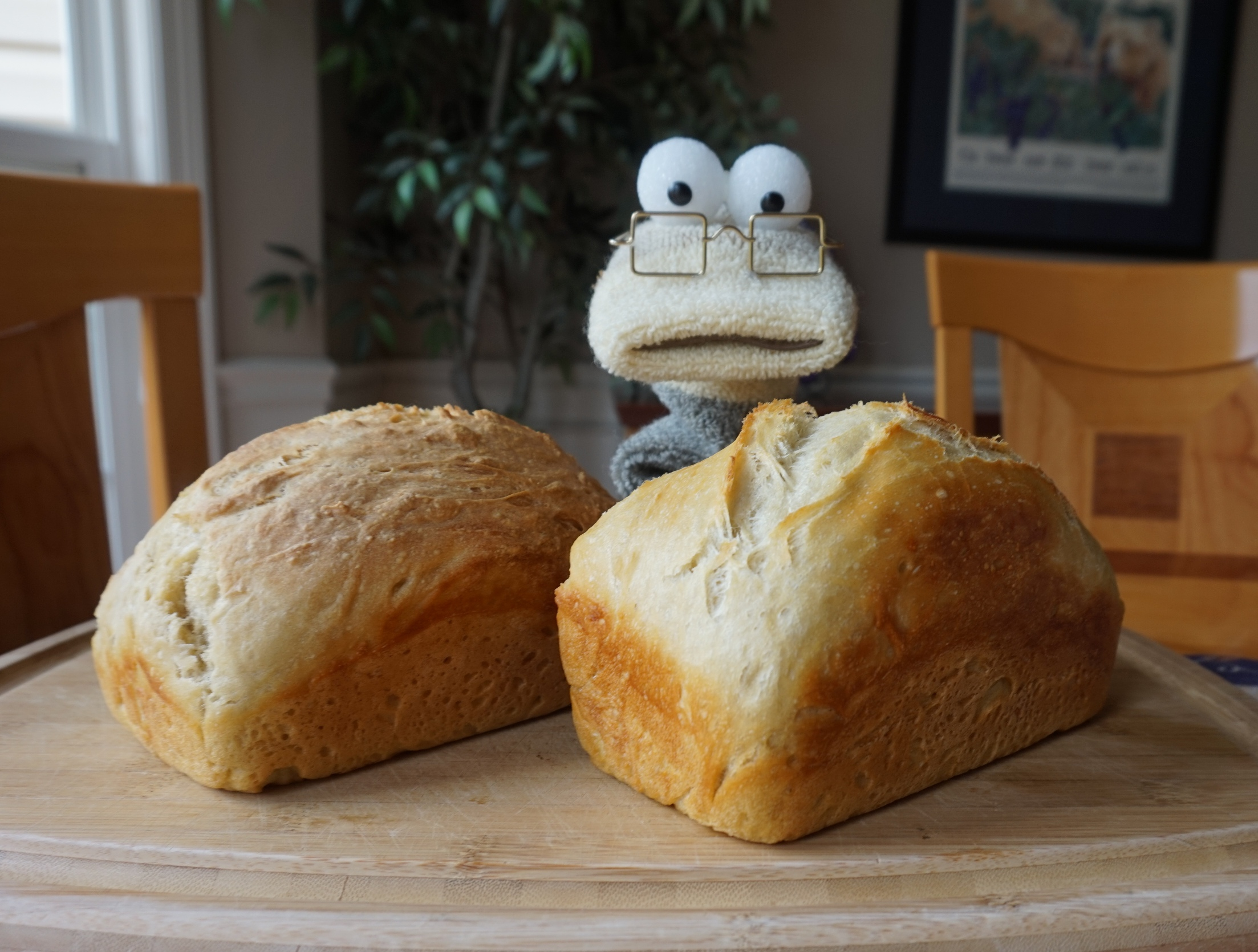 recipe: no knead sweet dough [21]